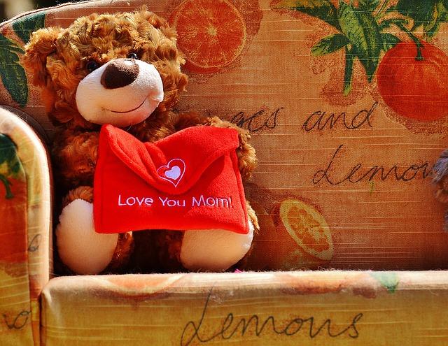 teddy-1364123_640